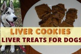 homemade-treats-for-dogs-liver