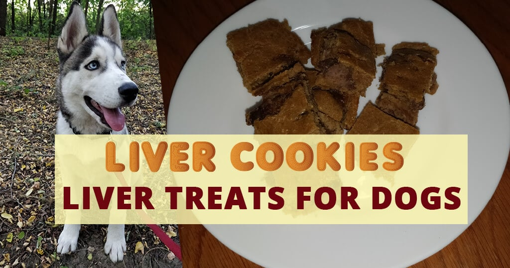 Liver treats for dogs - Husky Advisor