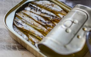 Dogs can eat sardines