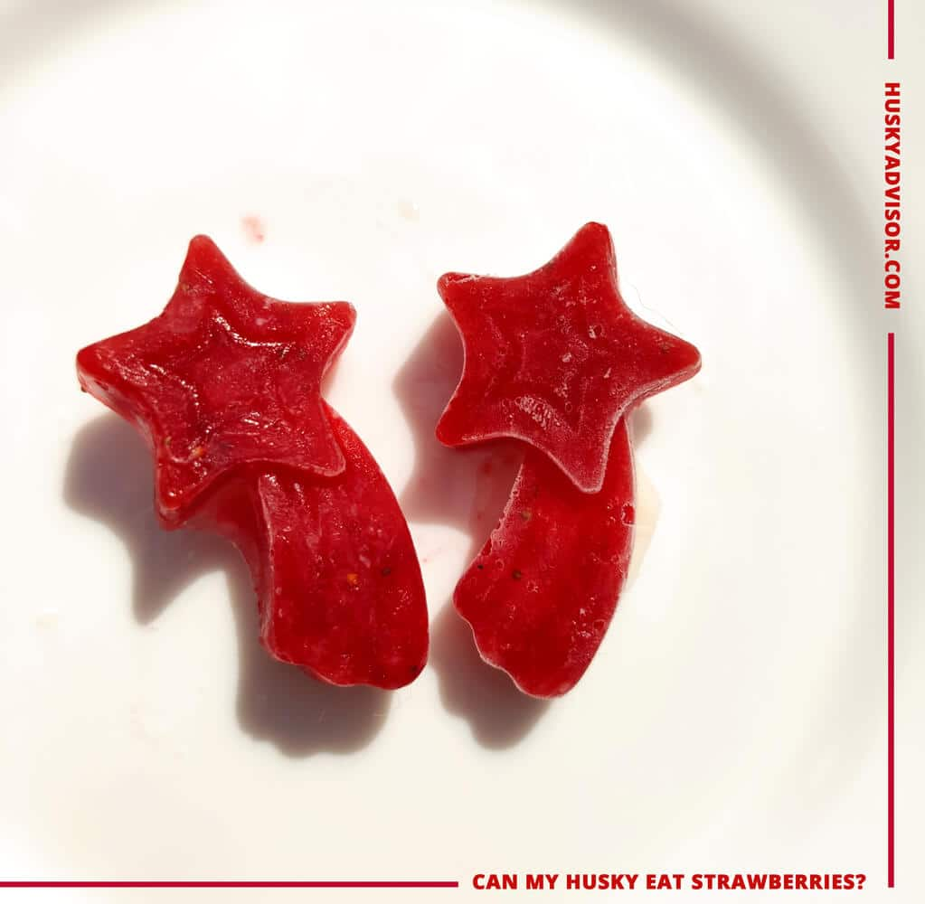 frozen strawberries treats for dogs